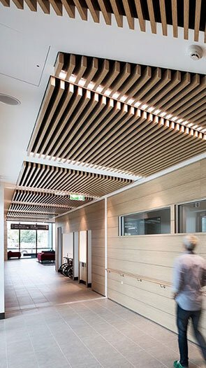 linea akustik ahşap tavan paneli